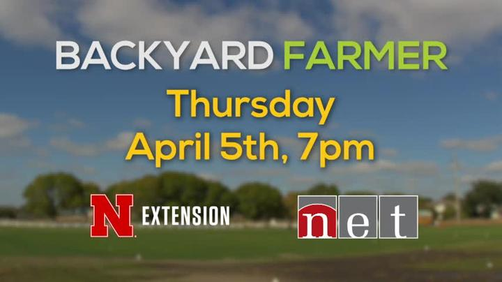 Backyard Farmer Coming Thursday April 5th, 7pm NET