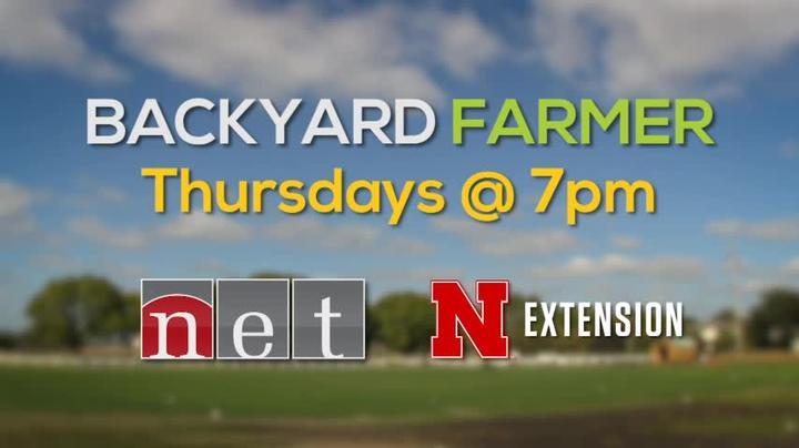 Backyard Farmer 2018 WKLY for 5/17  Thur 7pm