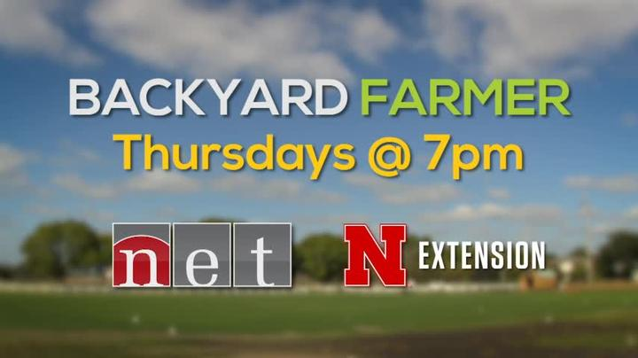Backyard Farmer 2018 WKLY for 6/14 Thur 7pm