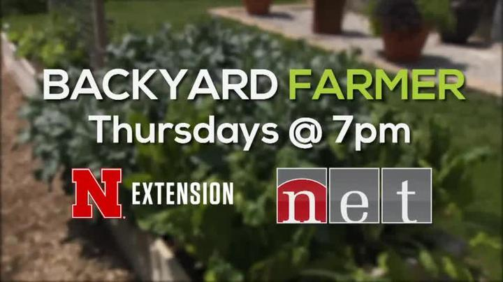 Backyard Farmer 2018 WKLY for 7/12 Thur 7pm