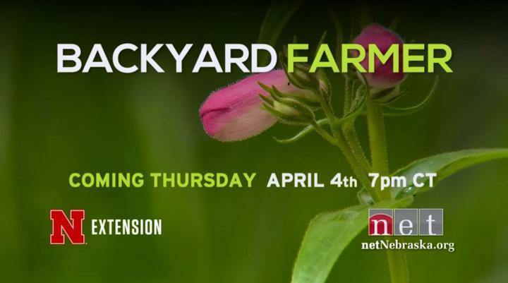Backyard Farmer Thursday April 4th 2019   7pm NET