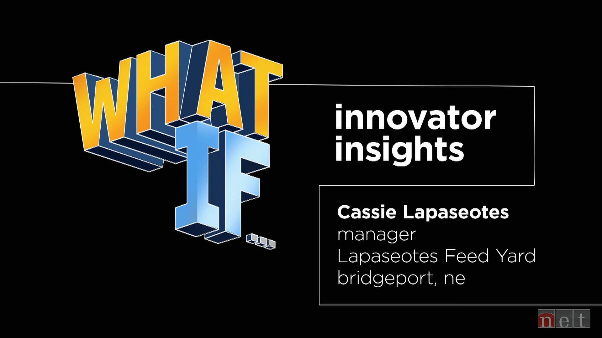 What If...: Innovator Insights Cassie Lapaseotes